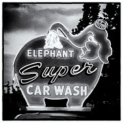 Car Wash Posters - Elephant Car Wash Poster by Tanya Harrison