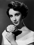 Movies Photo Framed Prints - Elizabeth Taylor Portrait Framed Print by Sanely Great