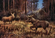 Flirtation Paintings - Elk by Genio GgXpress