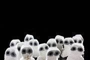 Simon Bratt Photography Acrylic Prints - Evil white ghosts in a crowd with black space Acrylic Print by Simon Bratt Photography