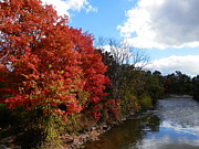 Pema Hou - Fall at the Credit River