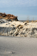 Sand Fences Prints - Fenced  Print by JC Findley