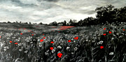 Jennifer  Blenkinsopp - Field Of Rememberance