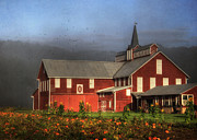 Barns Digital Art - First Light by Lori Deiter