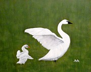 Swans... Paintings - First Outing by Anke Wheeler