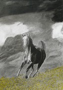 Horse Images Drawings Posters - Fleeing the Storm Poster by Steve Keller