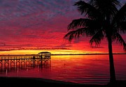 Elaine Franklin - Florida Sunset III