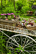 Baskets Photo Framed Prints - Flower cart in garden Framed Print by Elena Elisseeva