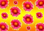 Flower Design Photo Originals - Flower pattern by Tommy Hammarsten
