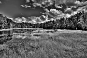 Fir Trees Photos - Fly Pond in the Adirondacks by David Patterson