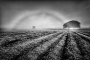 Furrows Framed Prints - Fog Bow Framed Print by John Farnan