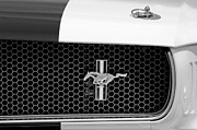 Ford Mustang Gt 350 Grille Emblem Print by Jill Reger