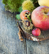 Mythja  Photography - Forest fruit