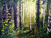 Backlit Originals - Forest Light by Cathy McClelland