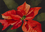 Christmas Flower Paintings - Francis Poinsettia by Sam Sidders