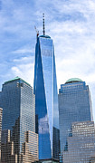 Kathleen McGinley - Freedom Tower