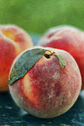 Harvest Art Prints - Fresh Peaches Print by Darren Fisher