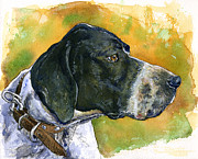 Dog Watercolor Framed Prints - Full Attention Framed Print by John D Benson