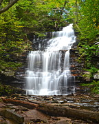 Glen Creek Prints - Ganoga Falls Print by Robert Harmon