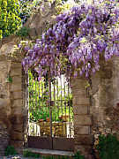 Fences Prints - Garden Gate Print by Ellen Henneke