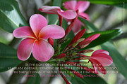 Tropical Photographs Prints - Garden of Love Print by Sharon Mau