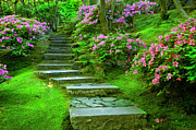 Walk Paths Prints - Garden Pathway Print by Brian Jannsen