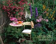 Garden With Chair Print by Hans Reinhard