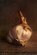 Health Food Digital Art Posters - Garlic 2 Poster by Elena Nosyreva