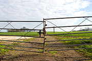 Metal Pole Photos - Gate To A Country Field by Fizzy Image