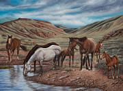 Quarter Horses Posters - Gathering At Diablo Canyon Poster by Ricardo Chavez-Mendez