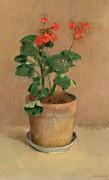 Flora Painting Prints - Geraniums in a Pot Print by Odilon Redon