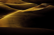 Great Sand Dunes Framed Prints - Golden Dunes Framed Print by Tom Cuccio