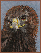 Landscape Greeting Cards Tapestries - Textiles Posters - Golden Eagle Poster by Dena Kotka