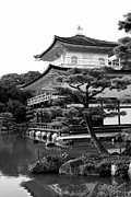 Buddhist Photo Prints - Golden Pagoda in Kyoto Japan Print by David Smith