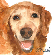 White Dog Framed Prints - Golden Retriever  Framed Print by Kathleen McElwaine