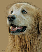 Retriever Digital Art - Golden Retriever by Larry Linton