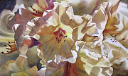 Close Up Floral Painting Prints - Golden Rhododendron Print by Sharon Freeman