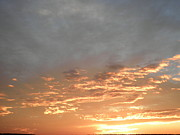 Kate Gallagher - Golden Sunset