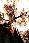Juan Jose Espinoza - Golden Tree