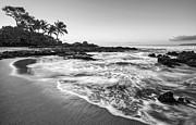 Jamie Pham - Good Morning Maui
