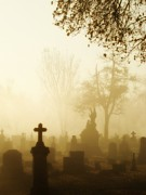 Graveyard Digital Art - Gothic Morning by Gothicolors And Crows