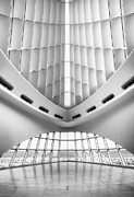 Monochromatic Photos - Grand Entrance by Scott Norris