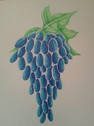 Blue Grapes Drawings Framed Prints - Grapes Framed Print by Emese Varga