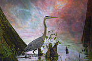 Cypress Knees Digital Art Posters - Great Blue Heron In A Heavenly Mist Poster by J Larry Walker