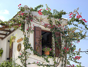 Skopelos Photos - Greek Charm by David Birchall