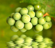 Ripened Fruit Prints - Green grapes Print by Michal Bednarek