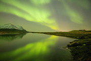 Green Reflection Print by Thorir Bjorgvinsson