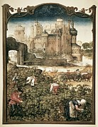Harvest Art Prints - Grimani Breviary. 16th C. Month Print by Everett