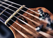 Musical Photos - Guitar Strings by Stylianos Kleanthous