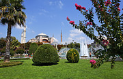 Hagia Sophia Prints - Hagia Sophia Museum and gardens Istanbul Print by Robert Preston